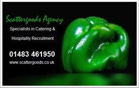 Kitchen Porter - hours to suit - Agency work - Surrey