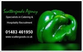 Agency Chefs - full & part time hours available. up to £13.50ph