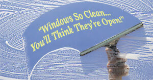 Window Cleaning / Pressure Washing / Painting Services