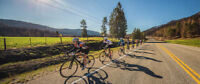Wanted: Two Massage Therapists for a Cycling Event in Osoyoos
