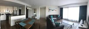 Furnished bachelor and 2 bedroom 2 bath apartment building