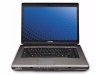 Toshiba Sat Pro L300 (Win7x64) Laptop