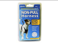 Small Dog Non Pull Harness £5