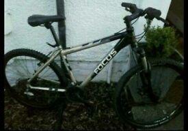 "Focus Mountain bike 18"" frame"