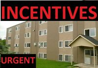 1BDRM $825/Month-$100 OFF First Month & Rest of November FREE!!!