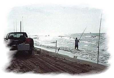 Big Surf Tackle