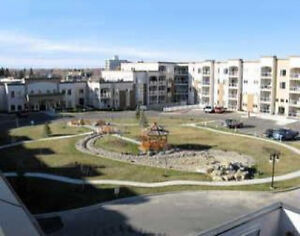 For Rent: Adult Only (#467) Condo (2020 32 St S, Lethbridge)