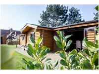 Fully furnished log cabin in Hertford Heath available for short term rent