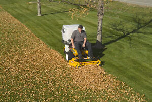 Travis's Snow Removal Fall Leaves Lawn Care Open Year Round Too Oakville / Halton Region Toronto (GTA) image 8