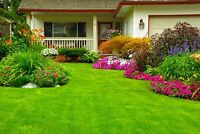 Spring lawn clean-up service