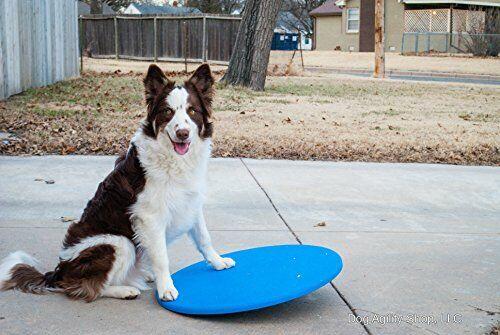 """Dog Agility Wobble Board   Balance Board 24"""" Diameter ⭐⭐⭐⭐⭐"""