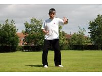 Dayan Qigong Classes with Master Tse - Movement and Meditation for Health & Vitality (Chi Kung)