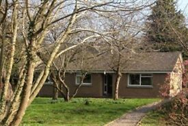 3 bed bungalow with large garden in central Jedburgh to rent