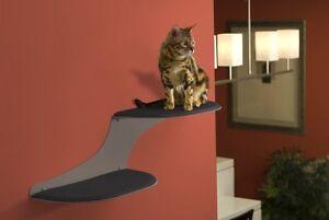 Cat Cloud cat Shelf