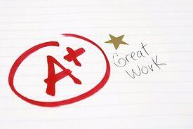 Tutor for Sociology (GCSE & A-Level), Citizenship (GCSE), Government and Politics (A-Level)