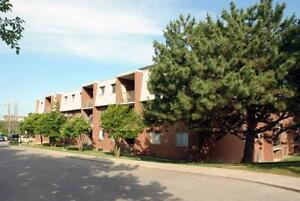 Spacious & Beautiful Suites Available Now! Kitchener / Waterloo Kitchener Area image 3