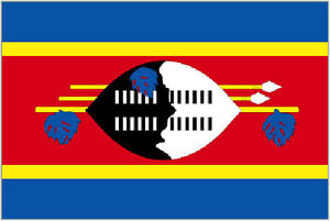 5-x-3-Swaziland-Flag-Swazi-Flags-South-Africa-African-Banner