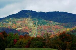 Condo in Stowe Vermont - Timeshare week MUST SELL