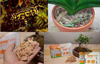 Spagmoss NZ Long Fiber Sphagnum Moss(150g 12L) for Reptile Beds,Terrarium,Orchid