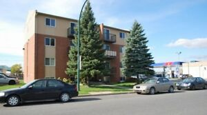 4 1/2 ***** BROSSARD Close to Downtown