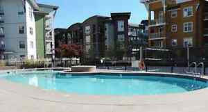 Bright Immaculate2 bed plus den 2 bath The Verve Glenmore $1375