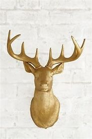 New and boxed Next Stag Head