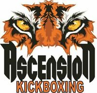 Ascension Martial Arts New Year Special. 10 Workouts for $50