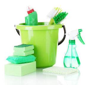 PERFECTLY CLEAN - In Home Cleaning Services