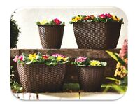 Set Of 4 Rattan Planters - £20.00