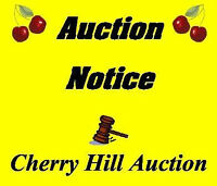 POLICE AUCTION