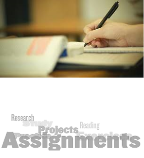 Project Help - Assignments and Essays