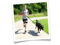 DOG RUNNING - Experienced distance runner and dog handler