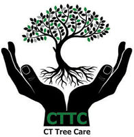 CT Tree Care (Tree Removal, Tree Trimming, Tree Clean-Up)