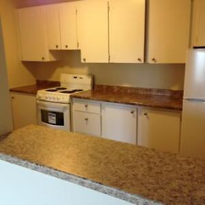 Herring Cove and Drysdale: 451 Herring Cove Rd	, 1BR