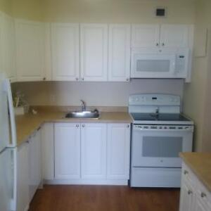 Great 2 bedroom apartment for rent London Ontario image 14