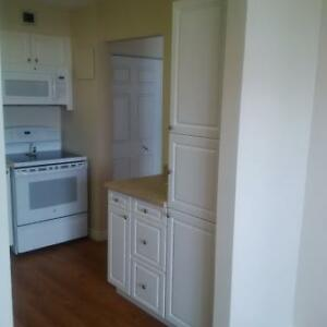 Great 2 bedroom apartment for rent London Ontario image 15