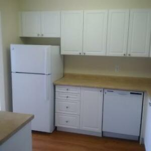 Great 2 bedroom apartment for rent London Ontario image 17