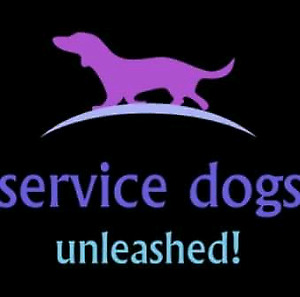 Basic, advanced, service dog, and therapy dog training