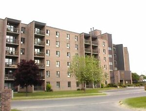 RARE 3 BD APARTMENT IN CENTRAL LOCATION! 114-17 Eldon Hall Pl