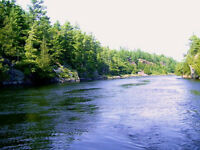 6 nicely treed building lots on beautiful French River