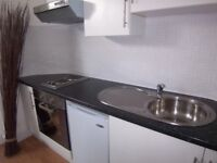 **** DSS ACCEPTED*** LARGE 1 DOUBLE BED FLAT IN FANTASTIC LOCATION** DSS OK
