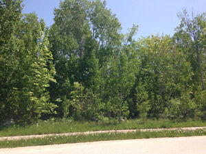 Build your dream home in the Blue Mountains Kitchener / Waterloo Kitchener Area image 1