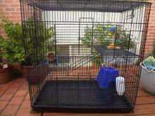 RAT / MOUSE CAGE - GOOD CONDITION Rostrevor Campbelltown Area Preview