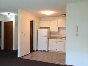 One Bedroom Condo #302- CW/Locker/Parking included