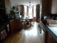 ||Victorian house, oak flooring, vegetarian vegan friendly with garden, free street parking