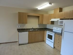 Furnished 2 Bedroom Condo in Royal Oaks Manor $1600 #1547
