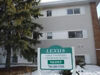 Lexus Manor - Newly Renovated Spacious One bedroom suites