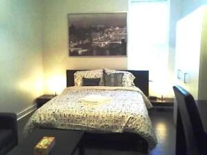 Furnished Downtown Studio Suites