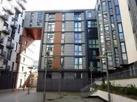 Two Bedroom Furnished Flat Available on Oswald Street, City Centre (ACT 460)