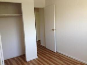 Kingston 2 Bedroom Apartment for Rent close to Memorial Centre Kingston Kingston Area image 4